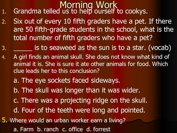 Reading Street - Island of the Blue Dolphin - Morning Work