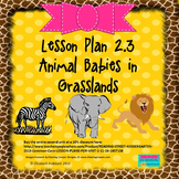 Animal Babies in Grasslands:  Editable Lesson Plan