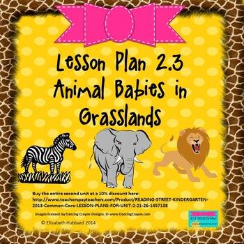 Animal Babies in Grasslands:  Editable Lesson Plan