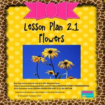 Flowers:  Editable Lesson Plan