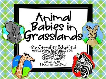 """Reading Street Kindergarten """"Animal Babies in Grasslands"""" Resources"""
