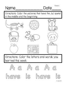 Reading Street Kindergarten Assessment and Review Pack Unit 2