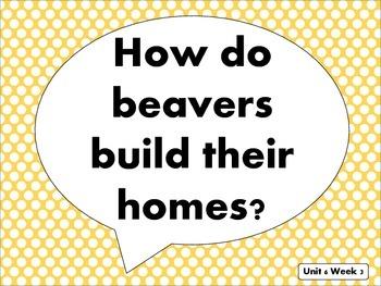 """Reading Street Kindergarten """"Building Beavers"""" Resources"""