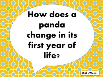 "Reading Street Kindergarten ""Little Panda"" Resources"