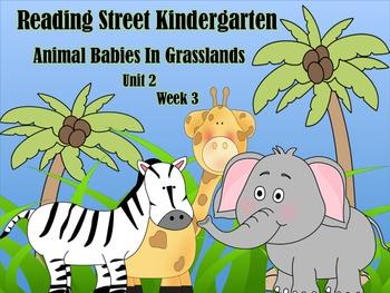 Reading Street Kindergarten Unit 2 Week 3 Animal Babies In Grasslands