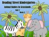 Reading Street Kindergarten Unit 2 Week 3 Animal Babies In