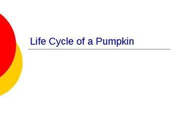 Reading Street Life Cycle of a Pumpkin Selection Vocabulary