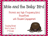 1st Grade Interactive Powerpoint, Mole and the Baby Bird