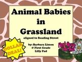Reading Street NO-PREP Printables: (Animal Babies in Grasslands)