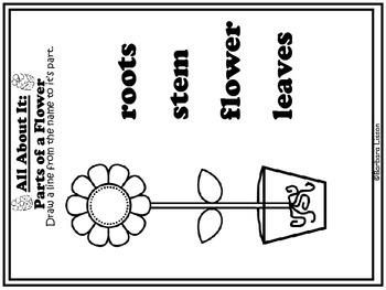 Reading Street NO-PREP Printables: (Flowers)