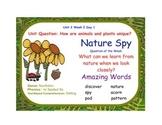 Reading Street Nature Spy Flipchart Days 1-5