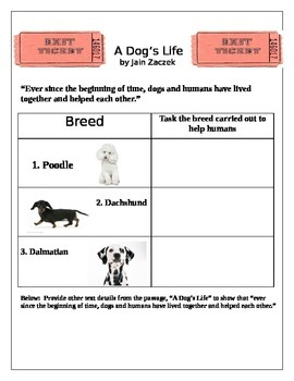 Reading Street Paired Passage A Dog's Life Old Yeller 6th Grade