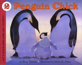 "Reading Street ""Penguin Chick"" Weekly PowerPoint"