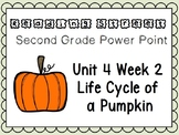 Reading Street Power Point Unit 4 Week 1 Life Cycle of a Pumpkin. Second Grade