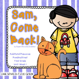 """Reading Street """"Sam, Come Back!"""" Additional Resources"""