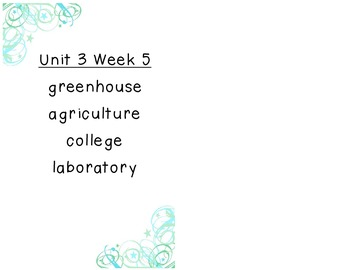 Reading Street Selection Vocabulary Unit 3 Grade 2