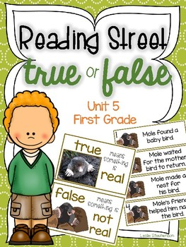 Reading Street True or False