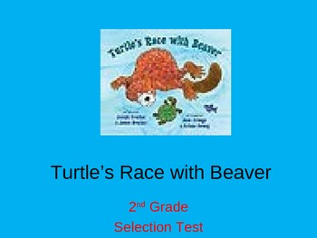 """Reading Street """"Turtle's Race with Beaver """" Selection Test"""