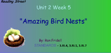 Reading Street Unit 2 Week 5: Amazing Birds Nests