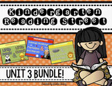 Reading Street Unit 3 BUNDLE!