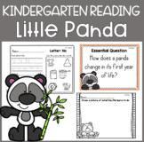 Reading Street Unit 3 Week 1: Little Panda