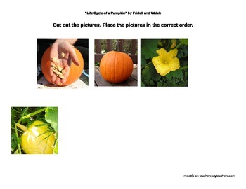 "Reading Street, Unit 4 ""Life Cycle of a Pumpkin"""