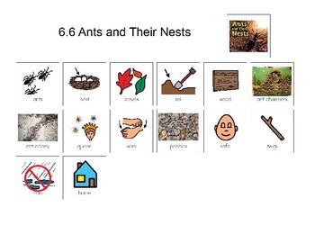 Reading Street Unit 6 Kindergarten Storyboards and Amazing Words