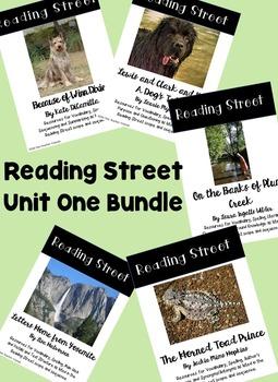 Reading Street Unit One Bundle