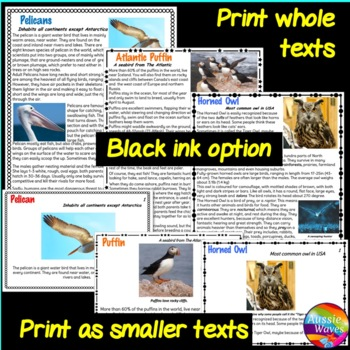 READING Non-fiction Passages Task Cards BIRD BUNDLE 2 Pelican Horned Owl Puffin