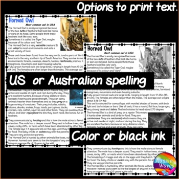 Informational Text and Task Cards Reading Non-Fiction BIRDS HORNED OWL