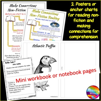 Informational Text and Task Cards Reading Non-Fiction BIRDS PUFFINS