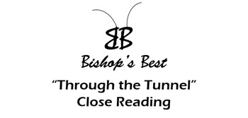 Through The Tunnel Close Reading infer theme evidence char conflict CCSS