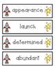 Reading Vocabulary Cards for ENY- 1st Grade