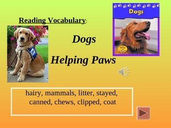 Reading Vocabulary for Dogs