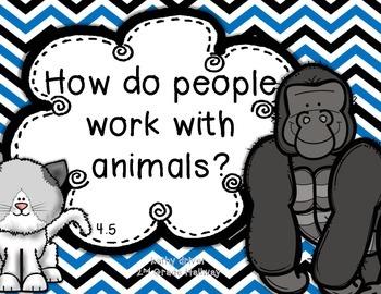 Reading Wonders 1st Grade Koko and Penny 4.5 {10 Literacy Activities}
