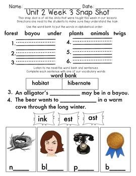 Reading Wonders 1st Grade Unit 2 Week 3 Weekly Assessment
