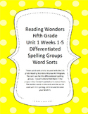 Reading Wonders 5th Grade Differentiated Spelling Word Sor