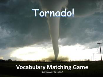 Reading Wonders Grade 2 Vocabulary Unit 3 Week 4