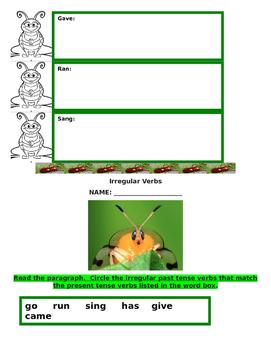 Reading Wonders Irregular Verbs Packet (How Beetle Got Her Spots)
