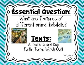 Reading Wonders Second Grade Essential Questions Bundle, Chevron Theme