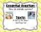 Reading Wonders Second Grade Essential Questions - Unit 2, Chevron Theme