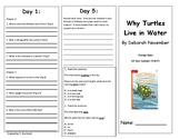 Reading Wonders Second Grade Unit 4 Week 4 Leveled Reader Brochures