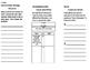 Reading Wonders Unit 3 (3rd Grade) Bundle Foldables