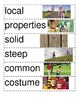 Reading Wonders 2nd Unit 4 Vocabulary Word Wall
