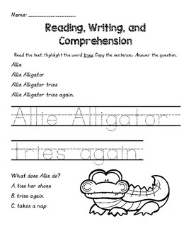 Beginning Reading, Writing, and Comprehension Skills