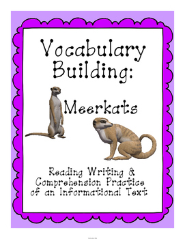 Reading, Writing and Comprehension Practice Information Text {Meerkats}