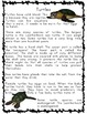 Reading, Writing and Comprehension Practice Information Text {Turtles}