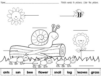 Reading and Math- Learning With Pictures K-1