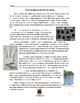 Reading Science Lesson: TREES (Deciduous & Coniferous) w/ 25 Multiple Choice Qs