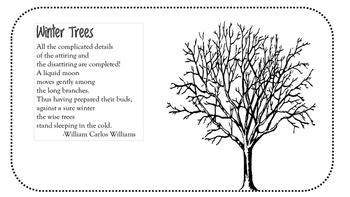 Reading and Understanding Poetry